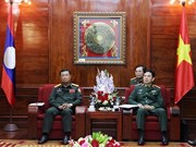 Vietnam, Lao armies reinforce coordination to promote special solidarity