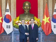 Vietnam, RoK look towards 100 bln USD trade by 2020