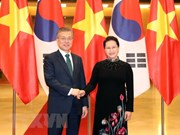 Vietnam, RoK delighted at progress of bilateral ties