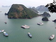 Ha Long Bay's water under threats