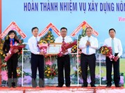 Vinh Long's Binh Minh town recognised as new-style rural area