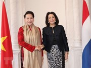Vietnam's top legislator holds talks with speaker of Dutch lower house
