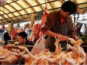 China allows import of Thai chicken meat