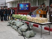 Thailand busts major drug trafficking ring