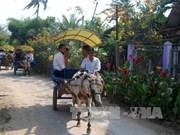 Ben Tre diversifies tourism products