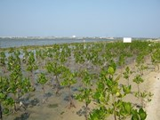 Sea dyke project hoped to help Mekong Delta cope with climate change