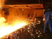 Hoa Phat exports wire drawing steel to Laos, RoK