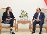 Vietnam willing to further medical cooperation with Denmark: PM