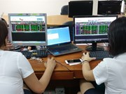 VN-Index slightly down on southern bourse