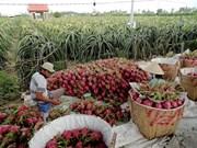 Australia helps Vietnam with agricultural development