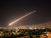 Vietnamese citizens warned not to travel to Syria