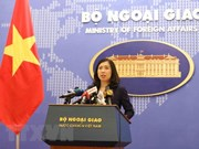 Vietnam expresses concern about situation in Syria