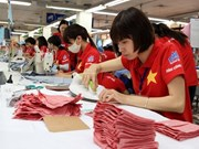 Vietnam firms advised to invest in Indian garment market