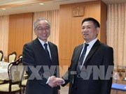 Vietnam, Japan audit agencies urged to lift cooperative ties