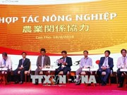 Can Tho city woos Japanese investors