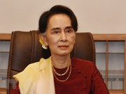 Vietnam-Myanmar relations will grow further: ambassador