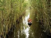 Int'l seminar talks Mekong Delta's tourism vision