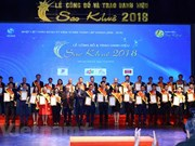 Sao Khue IT winners honoured
