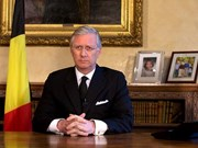 Belgium-Vietnam ties develop fruitfully, says King Philippe