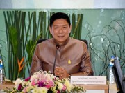 Thailand's rice production plan announced