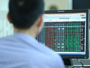 Key stocks rebound, fueling VN-Index's recovery