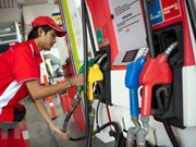 Indonesia plans to challenge US anti-dumping duty on biodiesel to WTO