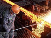 Steel sector expects 22 percent growth this year