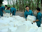 Dorufoam expands export to Russia, Europe, American markets