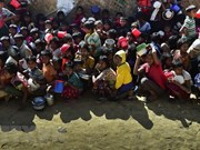 UN Security Council to press for Rohingya solution