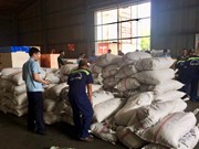 Another 3.3 tonnes of pangolin scales seized in HCM City