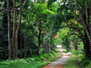 Environment protection needed in tourism development