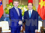 Work starts on Vietnam-Slovakia friendship building