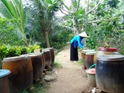 Woman rejects money to keep fish sauce traditions alive