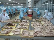 Vietnamese exports to Africa face price challenges