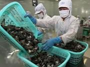 Vietnam dominates Canada's shrimp market