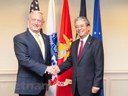 US Secretary of Defence vows to foster cooperative ties with Vietnam