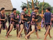 Diversity of Central Highlands' culture introduced at ethnic village