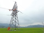 Electrification of rural areas makes stride over past decade