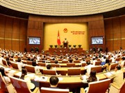Q&A sessions take place democratically: top legislator