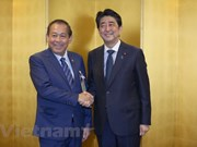 Vietnam, Japan enjoy sound strategic relations: Deputy PM