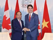 Vietnamese, Canadian PMs agree on measures to boost ties