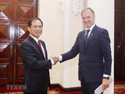 Vietnam, Latvia hold political consultation