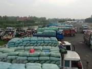 Agricultural product exports via Lao Cai border gate surge