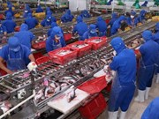 Seafood exports to China surge