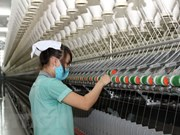 Construction of 50-million-USD wool factory begins in Da Lat