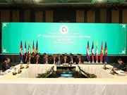 Vietnam helps promote sustainable development in Mekong Sub-region