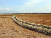 Meeting marks World Day to Combat Desertification