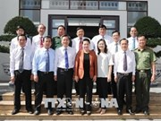 Bac Lieu urged to tap wind power potential