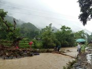 Floods, landslides cause serious damage to Lai Chau province