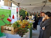 Vietnamese farm produce shines at Rungis International Market